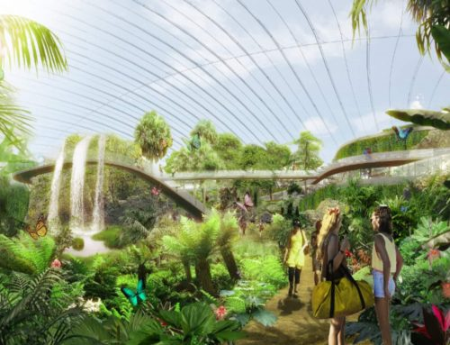 SOPUREINTHECITY – Tropicalia, la plus grande serre tropicale au monde